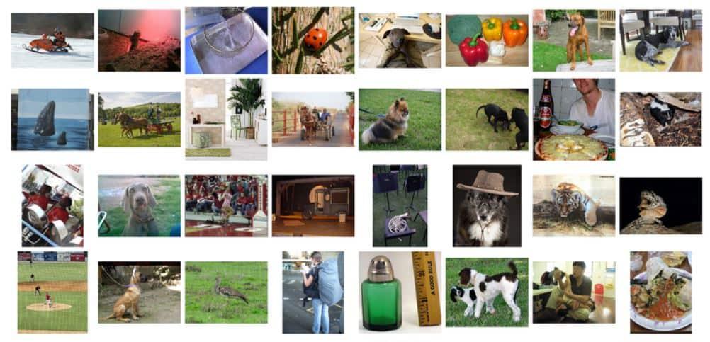 ImageNet - Concurso de Machine Learning usando Clasificación