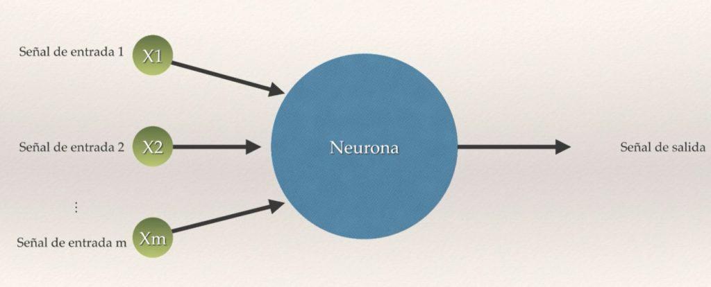 Neurona artifical